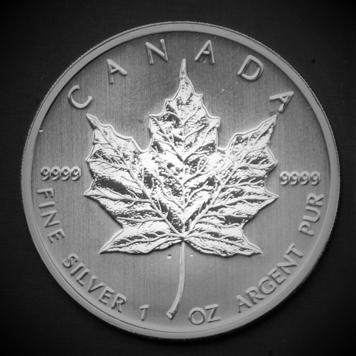 Maple Leaf Silbermünze 1Oz in 25er-Tubes