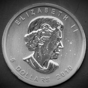 Maple Leaf Silbermünze 25 Stück 1Oz